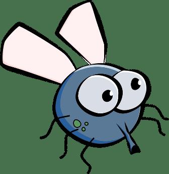 7 Friendly Ways to Get Rid Of Houseflies